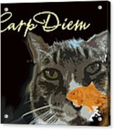 Carp Diem Acrylic Print