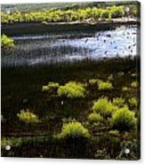 Carretera Austral River Acrylic Print by Arie Arik Chen