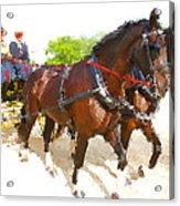 Carriage Artistic Acrylic Print