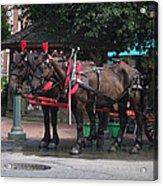 Carriage Horses At City Market Acrylic Print by Linda Ryan