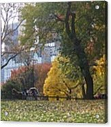 Carriage Ride Central Park In Autumn Acrylic Print