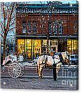 Carriage Ride Acrylic Print by Baywest Imaging