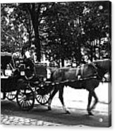 Carriage Ride Nyc Acrylic Print
