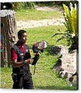Cartoon - A Trainer And A Large Bird Of Prey At A Show Inside The Jurong Bird Park Acrylic Print
