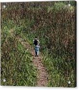 Cartoon - Man Walking Through Tall Grass In The Okhla Bird Sanctuary Acrylic Print