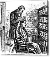 Cartoon: Phrenology, 1865 Acrylic Print