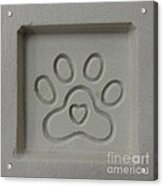 Carved Sand Paw Print Acrylic Print