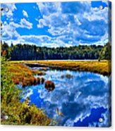 Cary Lake Near Old Forge New York Acrylic Print by David Patterson