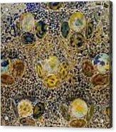 Casa Batllo Tiles Acrylic Print