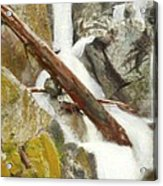 Cascade Creek Falls Acrylic Print