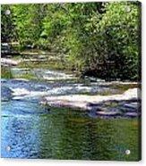 Cascade Creek Acrylic Print