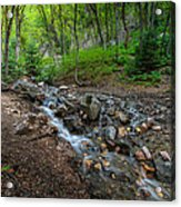Cascades Of The Forest Acrylic Print