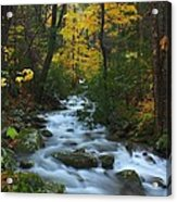 Cascades On The Motor Nature Trail Acrylic Print