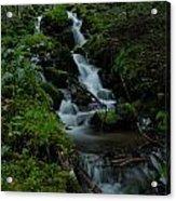 Cascading Brook In Mount Rainier National Park Acrylic Print