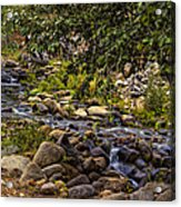 Cascading Creek Acrylic Print
