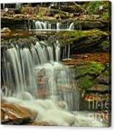 Cascading Everywhere At Ricketts Glen Acrylic Print
