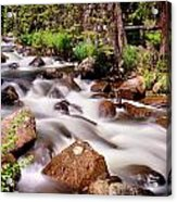 Cascading Rocky Mountain Forest Creek Acrylic Print