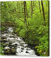 Cascading Stream In The Woods Acrylic Print by Andrew Soundarajan