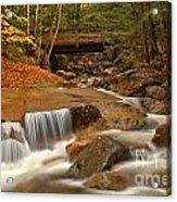 Cascades Below Flume Gorge Acrylic Print