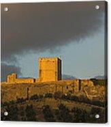 Castillo De La Mota Acrylic Print