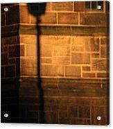 Casting Shadows Acrylic Print