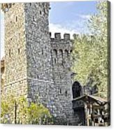 Castle In Spring Acrylic Print