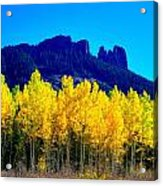 Autumn Castle Rock Aspens Acrylic Print