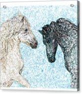 Castor And Pollux Acrylic Print