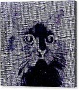 Cat 2 Acrylic Print