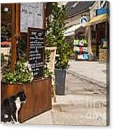 Cat And Restaurant Concarneau Brittany France Acrylic Print