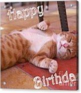 Cat Birthday Card Acrylic Print