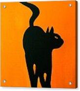 Cat Dance In Orange Acrylic Print