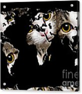 Cat Eyes World Map 2 Acrylic Print by Andee Design