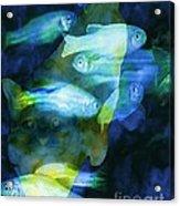 Cat Fishing At Night Acrylic Print