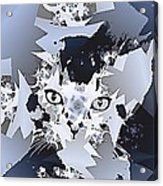 Cat In Fractaldesign Acrylic Print