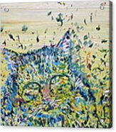 Cat In The Grass Acrylic Print