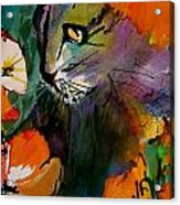 Cat In The Poppies Acrylic Print