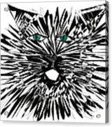 Cat Iwan Acrylic Print