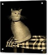 Cat On Checkered Tablecloth   No. 1 Acrylic Print