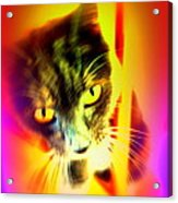 You Can Come And Visit The Cat People Acrylic Print