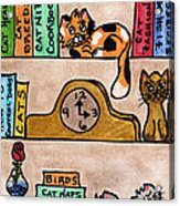 Cat Shelves Acrylic Print