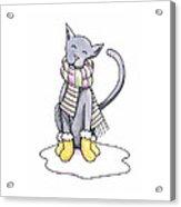 Cat Wearing Scarf Acrylic Print