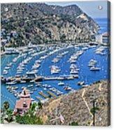 Catalina Harbor Acrylic Print