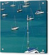 Catamaran  St Thomas Usvi Acrylic Print by Amy Cicconi