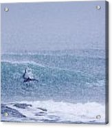 Catching A Wave In A Blizzard Acrylic Print by Tim Grams