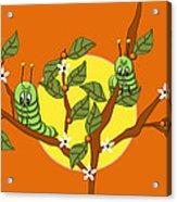 Caterpillars In The Orange Tree Acrylic Print