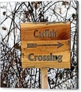 Catfish Crossing Acrylic Print
