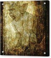 Cathedral Gargoyle Acrylic Print