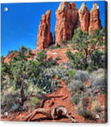 Cathedral Rock Acrylic Print by Lori Deiter
