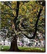 Cathedral Square - Exeter Acrylic Print